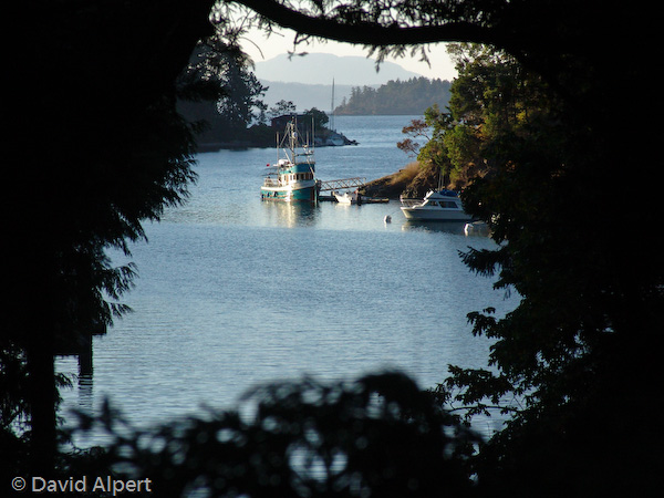 butchart_boat.jpg